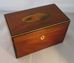 Antique Georgian Mahogany Tea Caddy With Conch Shell